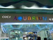 An Aquariam at the COEX Mall