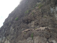 A rocky cliff face