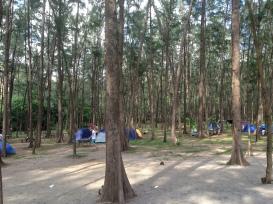 A campsite