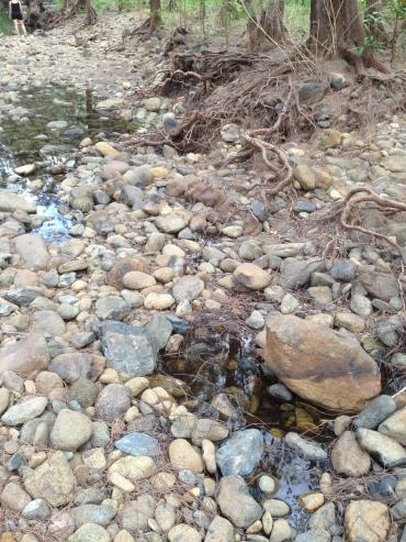Still signs of water